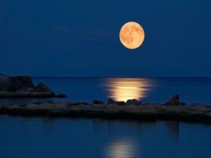Moon-moon-22762198-1024-768